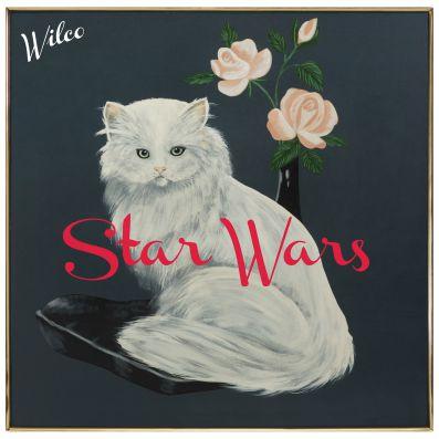 wilco-star-wars-28-07-15