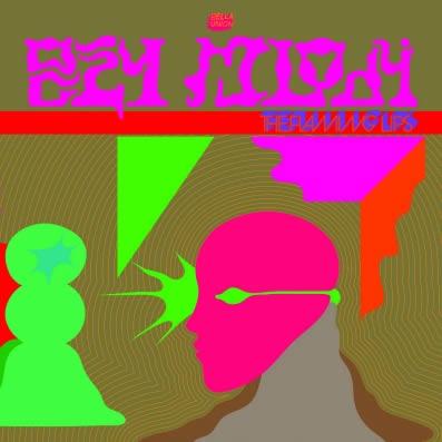 The-Flaming-Lips-Oczy-Mlody-26-01-17