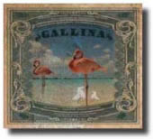 Gallina-02-10-09