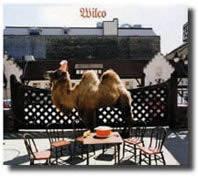Wilco-07-01-10