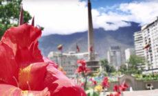 """Escucha la nueva canción en español de Devendra Banhart, """"Abre las manos"""""""