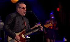 Tres vídeos de Elvis Costello & The Imposters en directo en televisión
