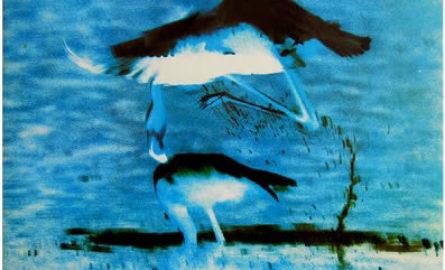 <i>Armarios y camas</i> (1986), de La Dama se Esconde