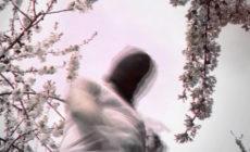 """La M.O.D.A. estrena canción y vídeo: """"La zona galáctica"""""""