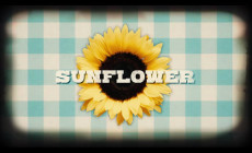 """Sunflower"", vídeo de Neil Diamond"