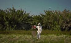 """""""Mi canción"""", vídeo de adelanto del nuevo disco de Pigmy"""