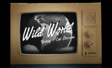 "Yusuf / Cat Stevens presenta el vídeo de ""Wild world"""